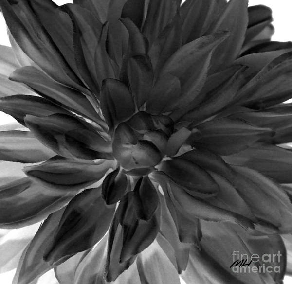 Wall Art - Digital Art - Digital Dahlia by Marsha Heiken