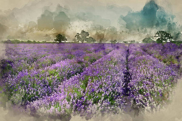 Lavender Mist Wall Art - Photograph - Digital Watercolor Painting Of Stunning Dramatic Foggy Sunrise Landscape Over Lavender Field In Engl by Matthew Gibson