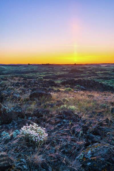 Digital Art - Dim Dawn Light At Potholes Coulee by Michael Lee