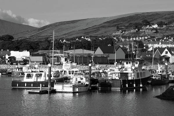 Photograph - Dingle Harbour  by Aidan Moran