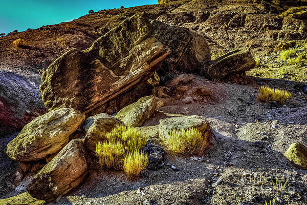 Photograph - Dinosaur Hill by Jon Burch Photography