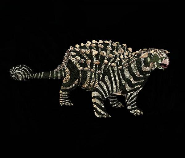 Drawing - Dinosaur Zebra Ankylosaurus 1 by Joan Stratton