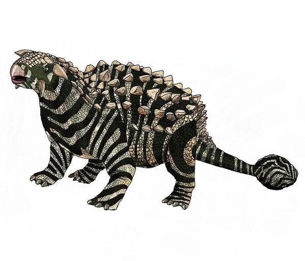 Digital Art - Dinosaur Zebra Ankylosaurus 2 by Joan Stratton