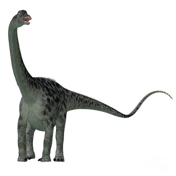 Colorado Wildlife Digital Art - Diplodocus Dinosaur Tail by Corey Ford