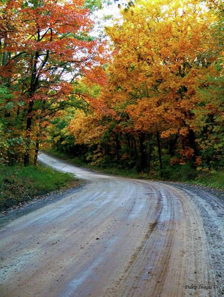 Photograph - Dirt Road Colors by Wesley Nesbitt