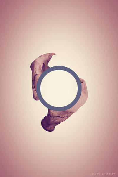 Figurative Abstract Photograph - Disconnecting The Dot - Peach And Blue Surreal Abstract Circle With Bone by Joseph Westrupp