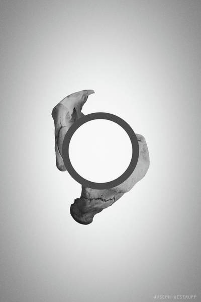 Figurative Abstract Photograph - Disconnecting The Gray Dot - Surreal Abstract Circle With Bone by Joseph Westrupp