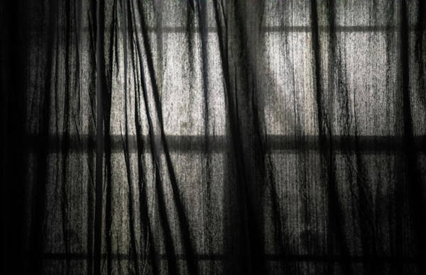 Wall Art - Photograph - Dismalness by Hyuntae Kim