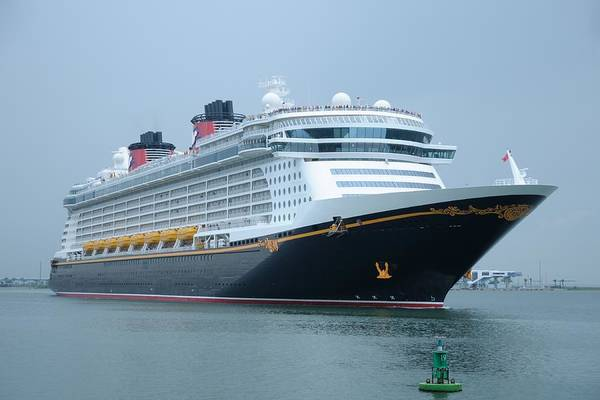 Photograph - Disney Dream by Bradford Martin