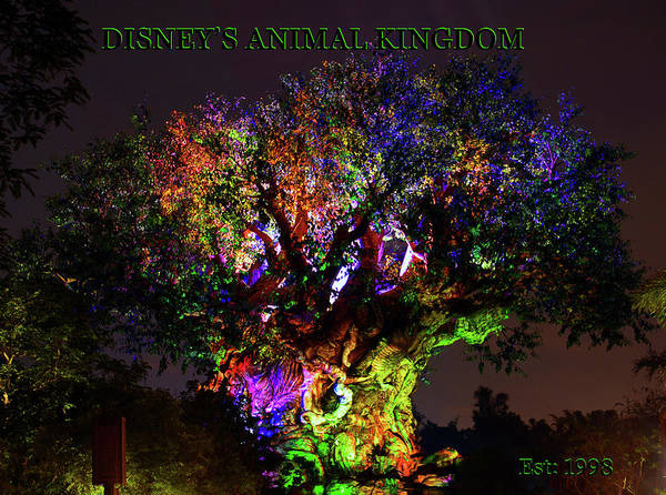 Wall Art - Photograph - Disney's Animal Kingdom Poster Work B by David Lee Thompson