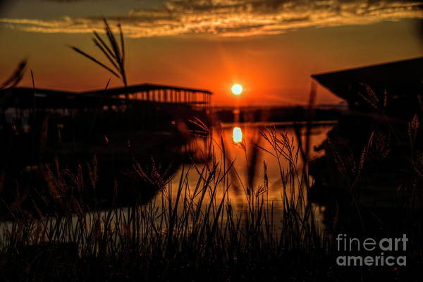 Photograph - Distant Sunrise by Diana Mary Sharpton