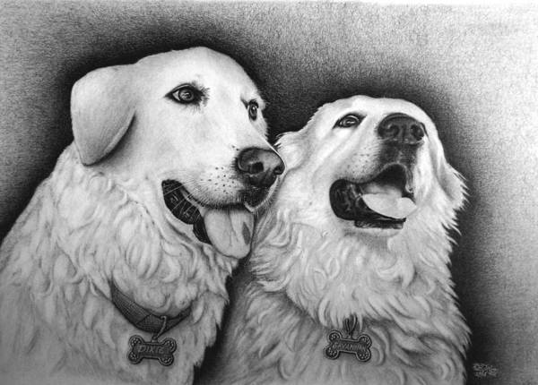 Mutt Drawing - Dixie And Savannah by Danielle R T Haney