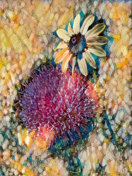 Mixed Media - Dizzy Daisy by Rosalie Scanlon