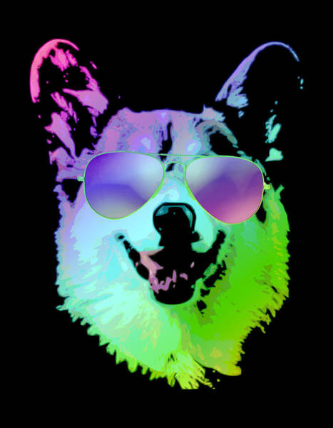 Wall Art - Digital Art - Dj Corgi With Sunglasses by Filip Hellman