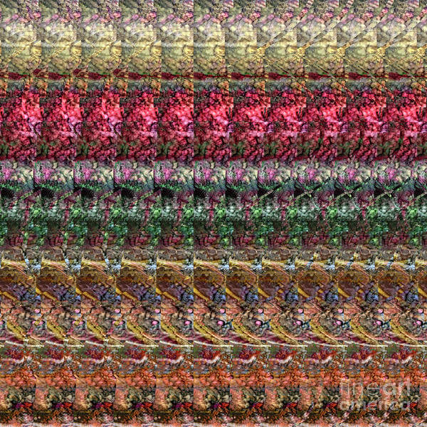 Digital Art - Dna Autostereogram Qualias Meadow 1 by Russell Kightley