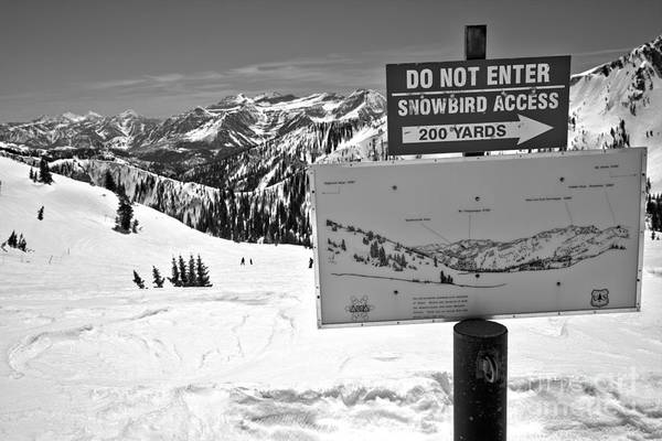 Photograph - Do Not Enter Snowbird Here Black And White by Adam Jewell