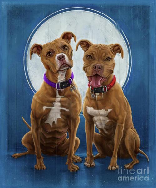 Terrier Digital Art - Dochas And Benji by Andre Koekemoer