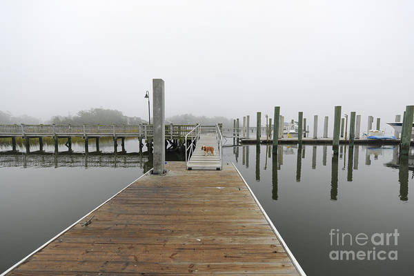 Photograph - Dockside Fog - Rivertowne On The Wando by Dale Powell