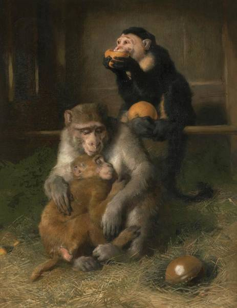 Wall Art - Painting - Doctor's Visit To Poor Relations At The Zoological Gardens by MotionAge Designs