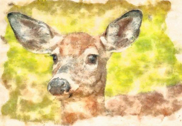 Painting - Doe A Deer by Dan Sproul