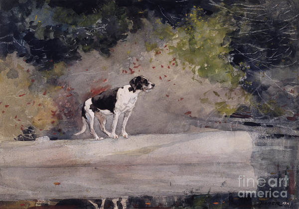 Wall Art - Painting - Dog On A Log, 1889  by Winslow Homer