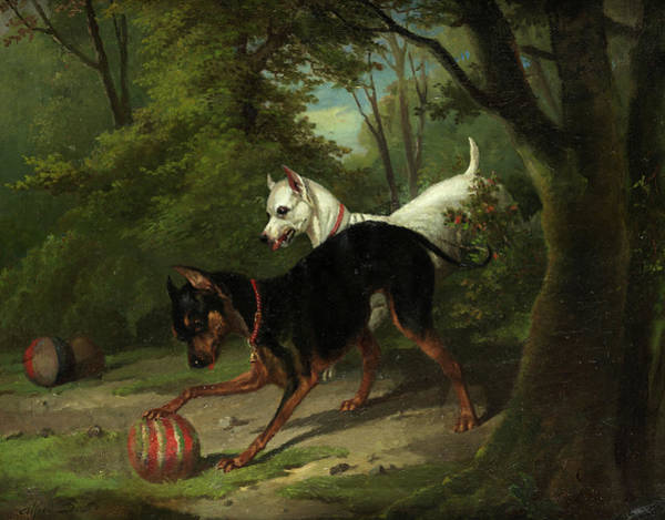 Doberman Wall Art - Painting - Dogs Playing With Ball by Alfred de Dreux