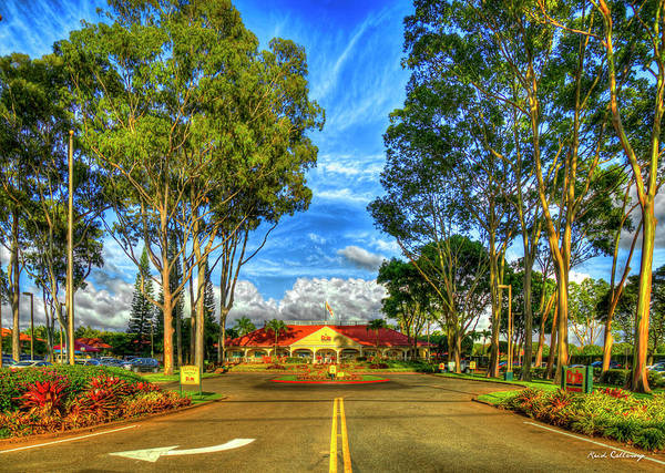 Photograph - A Beautiful Day 2 Dole Plantation Wahiawa Oahu Hawaiian Art by Reid Callaway