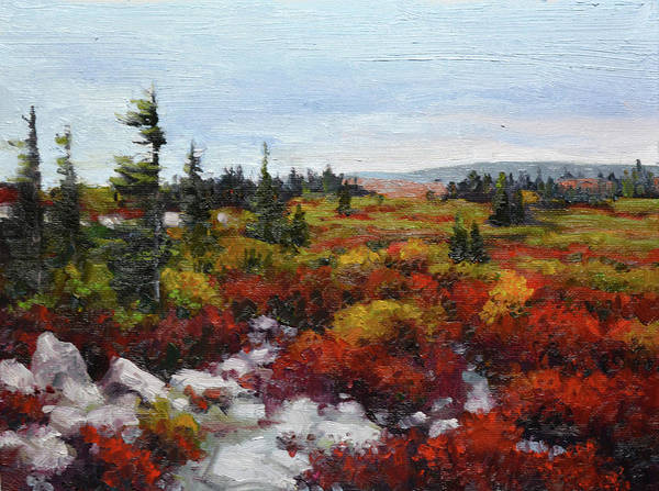 Allegheny Mountains Wall Art - Painting - Dolly Sods by Armand Cabrera