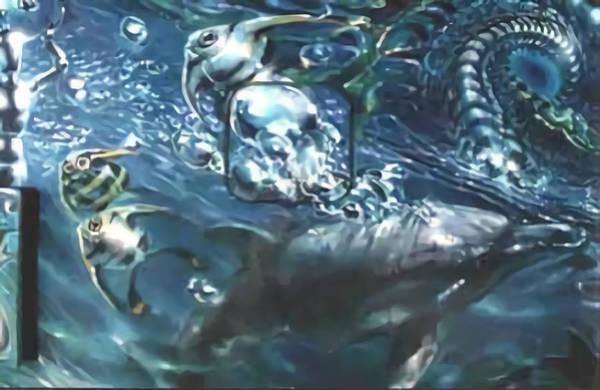 Digital Art - Dolphin by Stephane Poirier