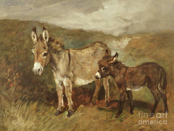 Wall Art - Painting - Donkeys Out On The Moor by John Emms