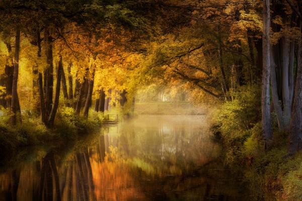 Photograph - Don't Dream It's Over by Kees Van Dongen
