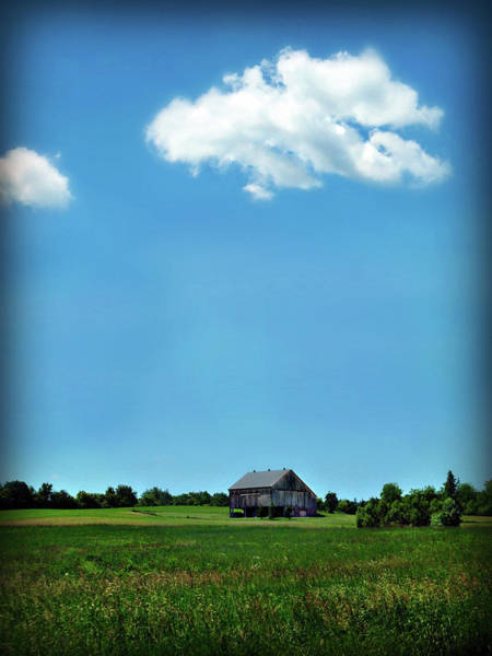 Photograph - Don't You Want Me Country by Cyryn Fyrcyd