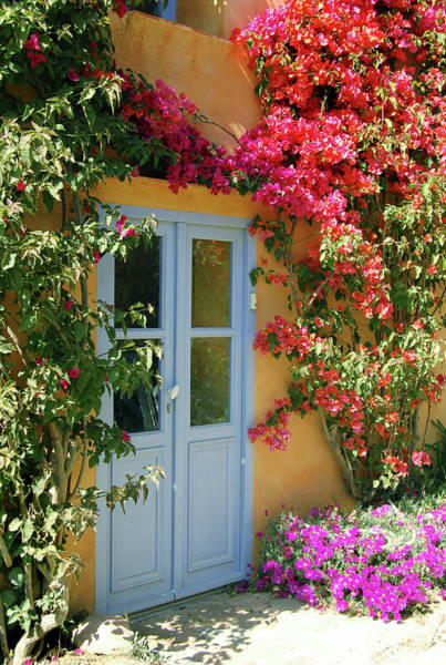 Bougainvillea Photograph - Door To A Fairytale House by Nikitje