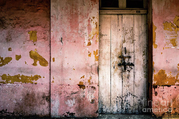 Photograph - Doors Of India - Pink Wall White Door by Miles Whittingham