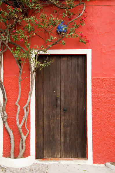 Mexico Photograph - Doorway by Livingimages