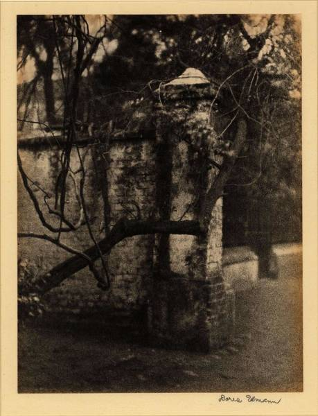 Wall Art - Painting - Doris Ulmann   1882-1934 , Brick Wall And Gate, With Tree Branch In Foreground  On Back  Large Pin by Doris Ulmann
