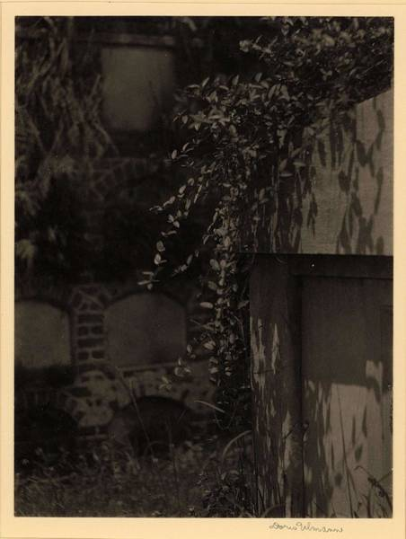 Wall Art - Painting - Doris Ulmann   1882-1934 , Cemetery Scene With Vine Growing On Top Of Mausoleum, And Wall Of Crypts  by Doris Ulmann