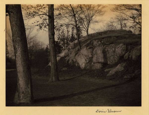Wall Art - Painting - Doris Ulmann   1882-1934 , Central Park, Rock Formation Surrounded By Tall Trees  On Back  by Doris Ulmann
