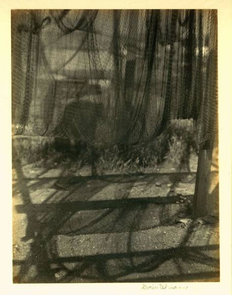 Wall Art - Painting - Doris Ulmann   1882-1934 , Drying Nets  Nets Hanging Up To Dry, With Shadows On The Ground Below by Celestial Images