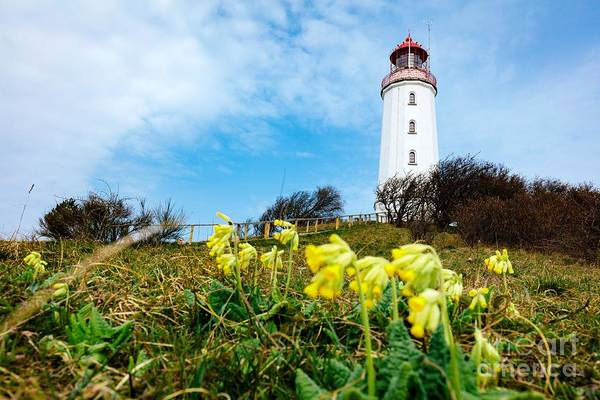 Wall Art - Photograph - Dornbusch Lighthouse On Hiddensee Island, Germany. by Michal Bednarek