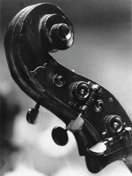 Photograph - Double Bass Scroll by Erich Auerbach