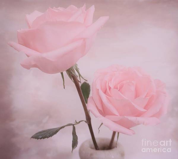 Wall Art - Photograph - Double Beauty Roses by Marsha Heiken