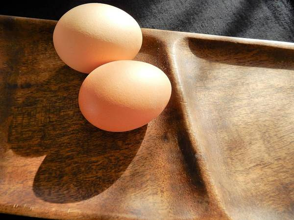 Photograph - Double Eggs by Tina M Wenger