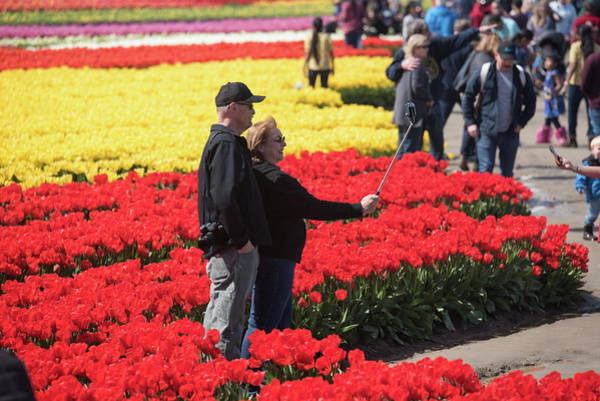 Photograph - Double Selfie In Tulips by Tom Cochran
