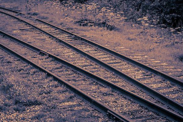 Wall Art - Photograph - Double Train Tracks  by Edward Garey