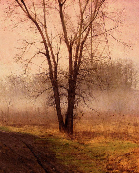 Painting - Double Trunked Tree In The Mist by Troy Caperton