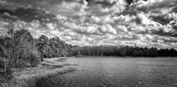 Photograph - Down By The Lake by Steve DaPonte