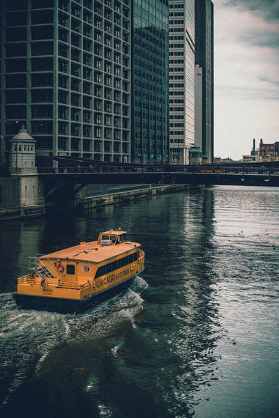 Photograph - Down River by Nisah Cheatham