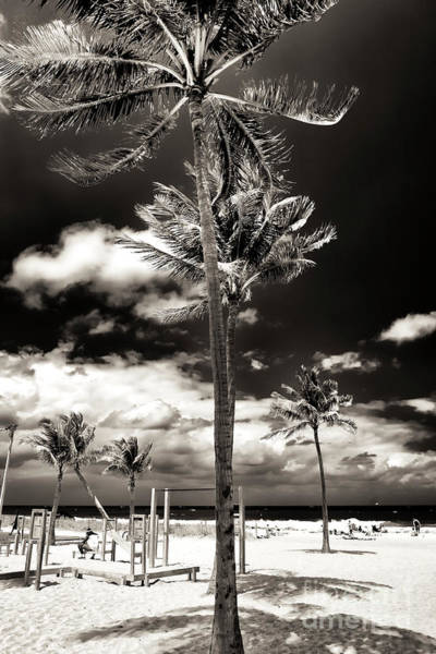 Photograph - Down The Middle At Fort Lauderdale Beach by John Rizzuto
