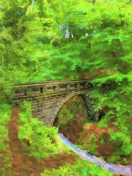 Wall Art - Photograph - Down To The Creek by Rich Franco